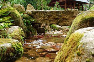 most nad strumykiem w ogrodzie japońskim