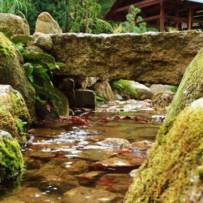 strumyk w ogrodzie japońskim