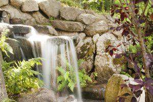wodospad w ogrodzie japońskim